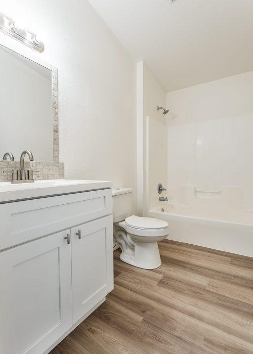 bathroom remodel; modern bathroom